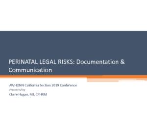 perinatal_legal_risks