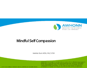Kandace Duns – Mindful Self Compassion AWHONN 2.21.2020
